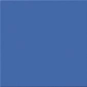 VPhoam Blue